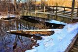 Avalon Park 12 31 2010