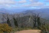 Descending Randalls Track, Grant