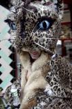 castro kitty