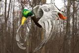 Duck - Paper Mache