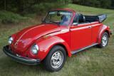79_beetle