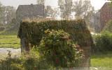 Regnbyge i sol