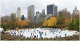 Wollman Rink Winter 2008