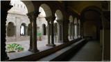The Cloisters  - Saint-Guilhem Cloister