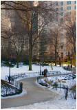 Morning  Sunlight In Central Park