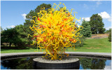 Chihuly - The Sun Wallpaper