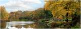 Autmn at The Pond