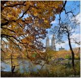 Central Park Autumn 2008 Gallery