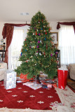 Christmas Alpharetta 2008