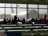 Narita 747 Sun Screen