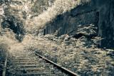 The Track II