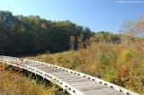 Wooden Bridge 3