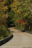 Wooden Bridge 4