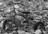 Lost Trike