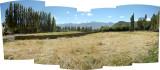 Typical Leh fields.