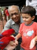 Feeding the parakeets at the Bird Park.