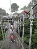 Bird Park wire bridge.