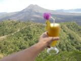 Fresh orange juice at Batur.