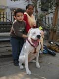 Rahil meets Zoey, Sonia's bulldog.