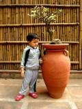 At the national bonsai garden