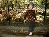 A visit to Haus Khas Deer Park