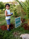 Visiting his tree