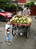 Coconut Wallah