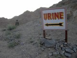 Urine site?