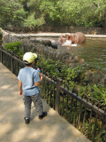 First stop:  Hippos
