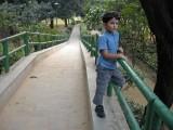 Lodhi Garden bridge