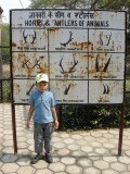 Horns and Antlers of Animals (New Delhi 2010)