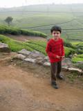 On the Nonsuch Tea Estate in Coonoor