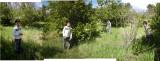 Rahil in Moreson's Farm lemon orchard (1 Sept 2012)