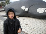 In Hermanus with a southern right whale