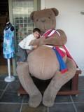 Huge teddy bear in Franschhoek