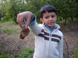 Found some snails!