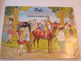 Peb's Thoroughbreds Coloring Book