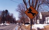 Other Left Hand Curve Hatfield MA.jpg