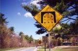 Bridge Dimensions (Greenfield, MA)