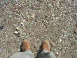 Glass Dump, Albuquerque, NM (March 2006)