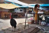 Dinner, Oaxaca (2003)