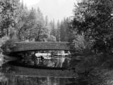 Sentinel Bridge b/w