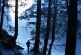 Morning Mist Trail