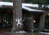 Snowy winter morning in Yosemite Valley