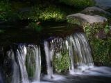 Waterfall at Fern Spring
