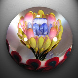Artist: Richard Hollingshead  Size: 1.44  Type: Lampworked Boro