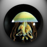 Artist: JD Anderson  Size: 1.53  Type: Lampworked Boro