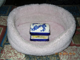 Candy Ashes resting in her bed...RIP
