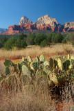 Brins Mesa Trail - the end