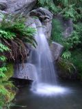 Charleson Park waterfall - normal colour, saturated greens